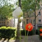 printemps-2011-81331