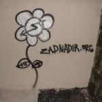 solidarite-avec-la-zad-0504
