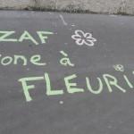 zone-a-fleurs-9984