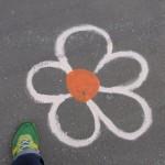 zone-a-fleurs-9988